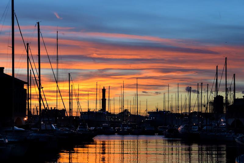 Genova: tramonto tra gli 'alberi' del porto di christian_taliani