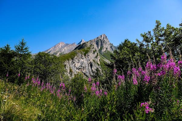 Ritorneremo ancor sui nostri monti..... di Ro51