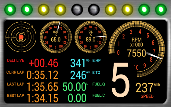 DashMeterPro for RBR