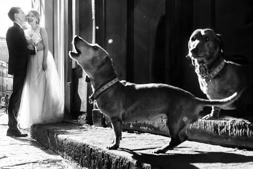 Wedding photographer Fabio Mirulla (fabiomirulla). Photo of 24.10.2019