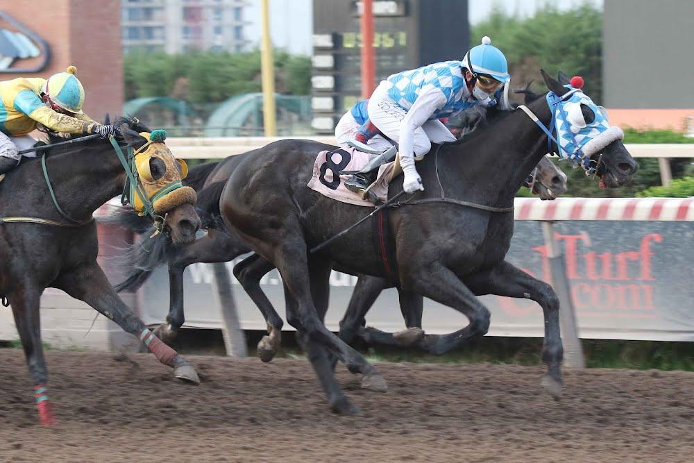 Honuiti (Rock of Gibraltar) ganó Handicap (1000m-Arena-HCH).