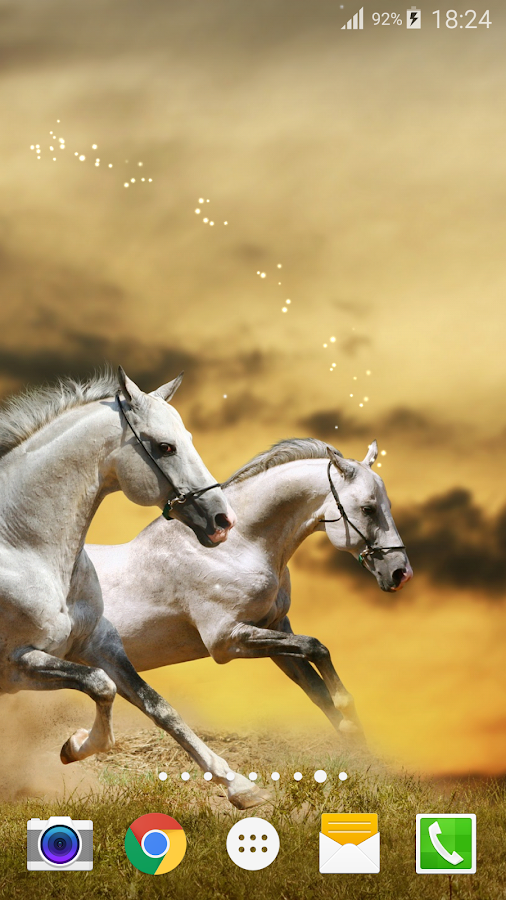 horse live wallpaper pro free android apps on google play