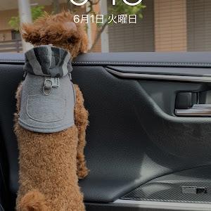 RAV4 MXAA54のカスタム事例画像 リッキー②さんの2021年06月01日00:16の投稿