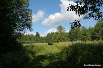 Photo: The East Trail at Knight Island State Park