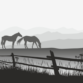 Two horses on meadow with fence by Vladimir Ceresnak - Drawing All Drawing ( country, grazing, stock image, rural, graphics, two, scene, agriculture, domestic, beautiful, mammal, romantic, grass, livestock, farm, land, royalty free photo, meadow, pet, horses farmland, images, purebred, nature, stock photos, countryside, black, tranquil, eating, picture, outdoor, horse, ranch, feed, vectors, pictures graphic, field, outside, wooden, animal, adult, fence, wild )