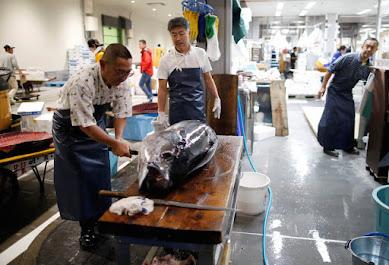 """豊洲のネガティブキャンペーンに物申す!法治国家・日本の安全基準を満たし、新市場は""""世界が驚く魚市場""""になる"""