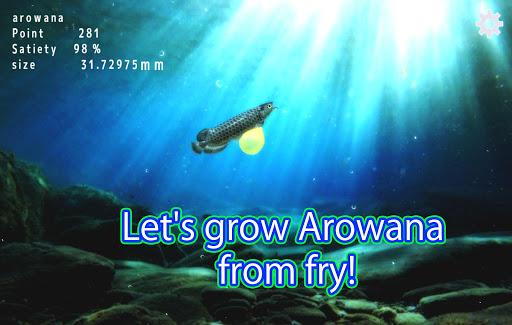 Arowana raising from fry  screenshots EasyGameCheats.pro 5