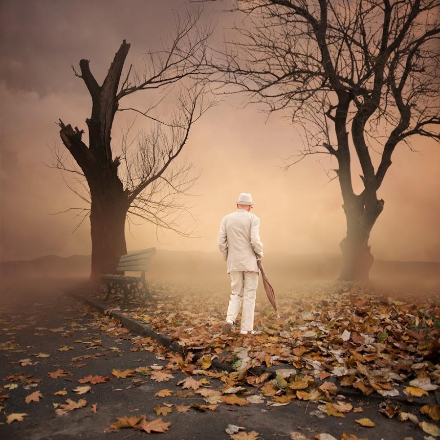 Autumn walking by Caras Ionut - Digital Art Places ( http://www.carasdesign.ro/tutorials )