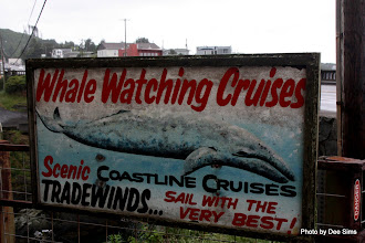 Photo: (Year 2) Day 350 - In Depoe Bay