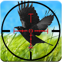 Crow Hunting Game 3D 2016