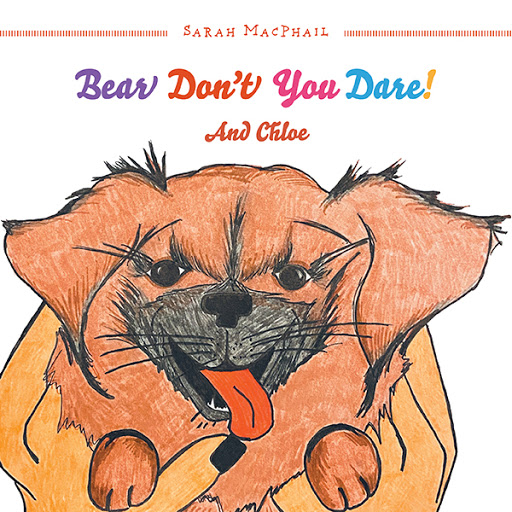 Bear Don't You Dare! cover