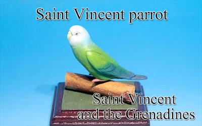 Saint Vincent parrot -St Vinc & Grenadines-
