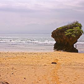 Santolo Beach by Mulawardi Sutanto - Landscapes Beaches ( garut, santolo, west java, beach, travel )