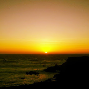 Yellow Coast by Jennifer Watkins Odom - Instagram & Mobile Android (  )