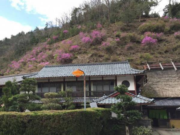 Kigusuriya Inn