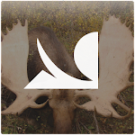 Big Game Hunting by HowtoHunt 1.0.5