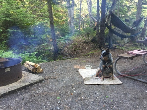 Camp Near the Sounds of the Atlantic in Acadia National Park