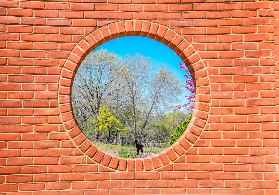 Beautiful Circular View by Deborah Lucia - Artistic Objects Other Objects ( bricks, blue sky, view, trees, deer ornament )