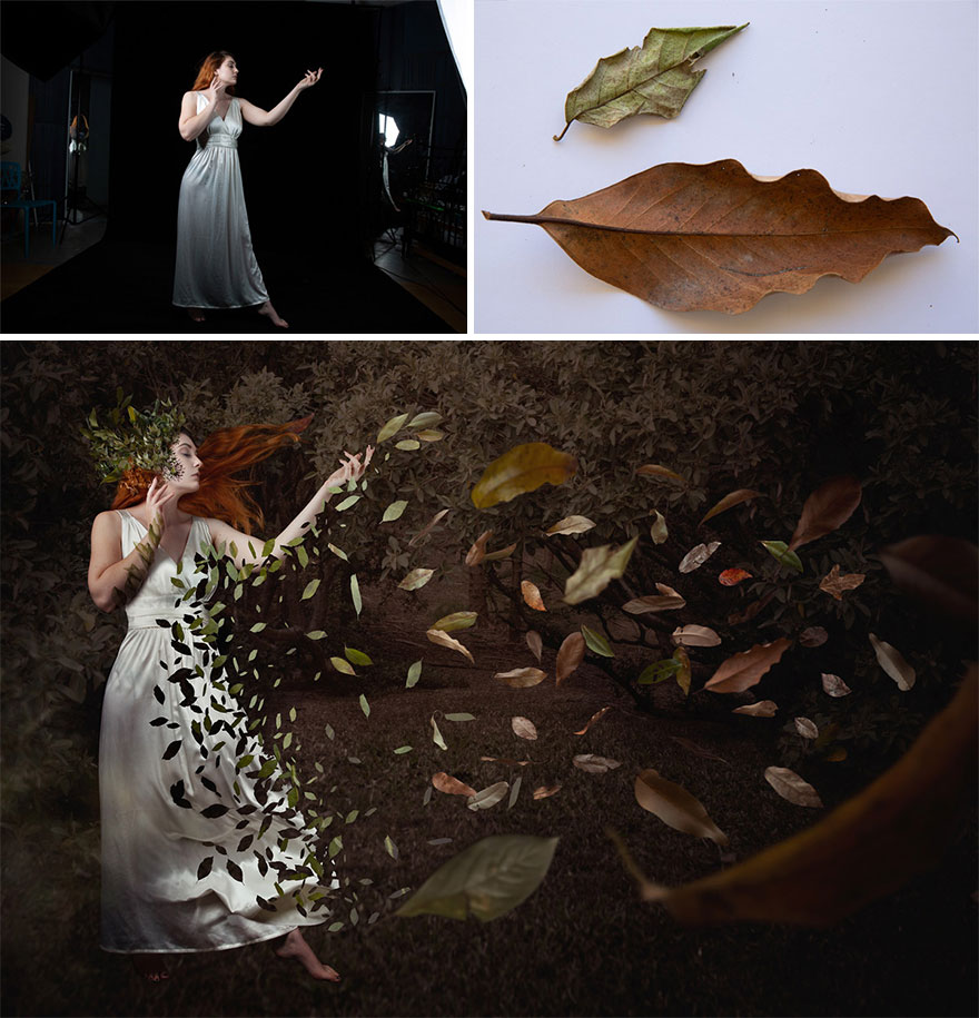 """""""Seasons Change"""" – Dispersing Away Into Nothing"""