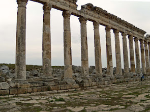 Photo: Apamea, Cardo Maximus