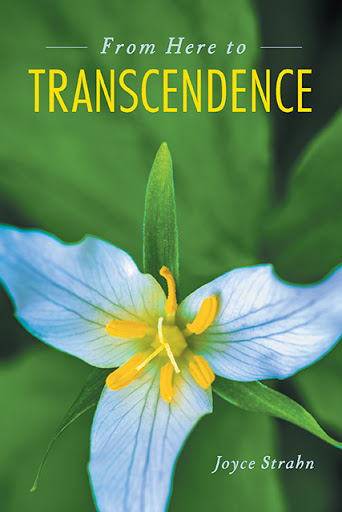 From Here to Transcendence cover
