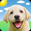 Weather Puppy - App & Widget Weather Forecast icon