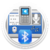 Bluetooth Command