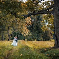 Wedding photographer Sergey Gerasimov (fotogera). Photo of 22.01.2016