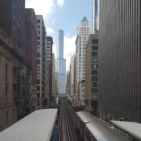 Chicago Rail by Riddhima Chandra - Uncategorized All Uncategorized ( chicago l, railway, chicago, tracks, train,  )