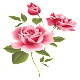 WAStickerApps - Flowers for PC-Windows 7,8,10 and Mac