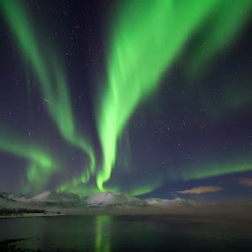 aurora and shooting star by Benny Høynes - Landscapes Starscapes ( canon, foggy, bennyhøynes, aurora, boreoalis, night )