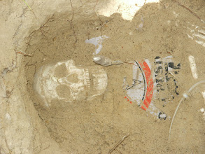 Photo: Usually the first thing to appear in the grave is the skull or the innominates (hips).