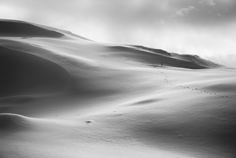 NEVE......non è il deserto.... di Mario_Panteghini
