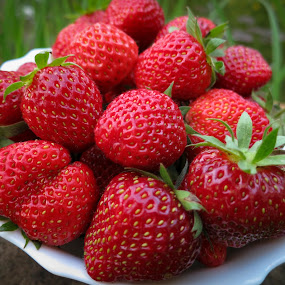Strawberry by Marina Denisenko - Food & Drink Fruits & Vegetables ( fruit, strawberry, fruits and vegetables )