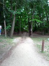 Photo: Path to the beach - 1...