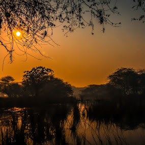 The Rise!! by Siddharth Kakade - Landscapes Sunsets & Sunrises