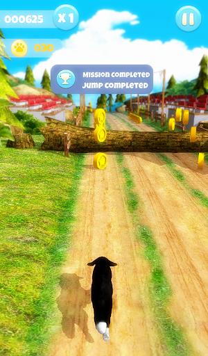 Dog Run apktram screenshots 17