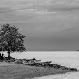Beach in B&W by Gary Dobbin - Landscapes Beaches ( beachscape, moody, shapes, dark, geometry, black and white )