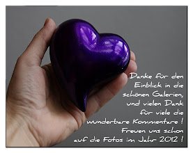 Photo: Danke liebe Freunde und Favoriten !   Danke für den Einblick in die schönen Galerien,  und vielen Dank für die viele wunderbaren Kommentare und Freundschaft !  Freuen uns auf die Fotos im Jahr 2012 !  http://www.youtube.com/watch?v=U9U0R1kCRzU&feature=colike