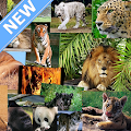 Animals Wallpapers APK