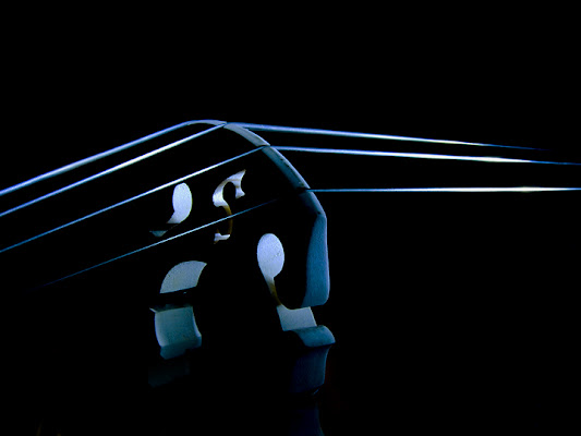 Blue strings di Mirko Macari Fotografia