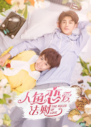 The Rules of Love China Web Drama
