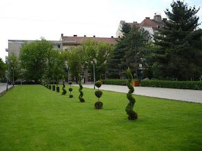 Photo: Angol kert az Ullmann palotával