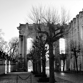 porte chantilly 2 by Nathalie Coget - Black & White Buildings & Architecture