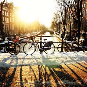 The Dutch way! by My 1st Impressions - Transportation Bicycles ( bikes, sunset, wheels, snow, amsterdam, bridge, sun, shadows )
