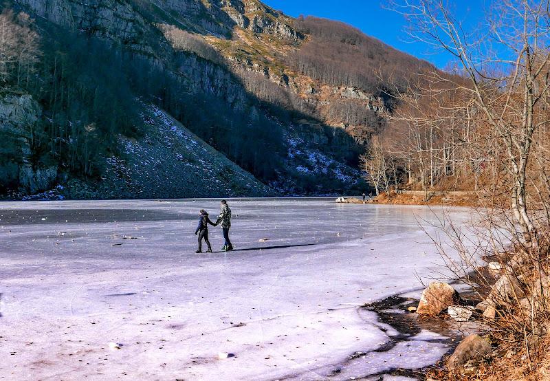 Sul lago ghiacciato di gnuc