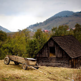 Ready to go by Iulia Georgescu - Buildings & Architecture Homes ( wood, grass, carriage, green, traditional, road, house, rural, fence, mountains, tree, village, autumn, fall )