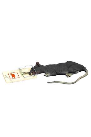 Råttan Gunnar