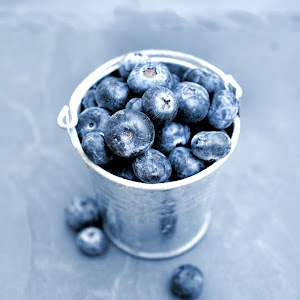 Best blueberries.jpg