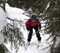 Photo: Descending Hemlock Glide